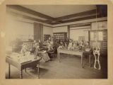 Bryn Mawr College students in a Taylor Hall biology laboratory