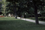 Campus walkway with lawn, trees and cars visible