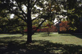 Campus lawn with a large tree visible