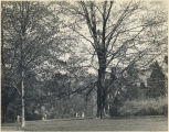 Bryn Mawr College Campus, General View