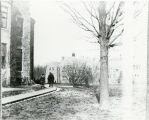 Two men walking on the Bryn Mawr College campus