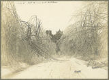 Snow scene, Bryn Mawr College campus