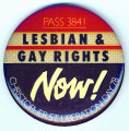 Pass 384! Lesbian & Gay Rights Now! Christopher St. Liberation Day 78.