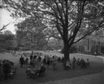 Parents Day on Founders Green 5