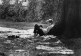 Student reading, leaning against tree trunk