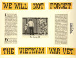 We Will Not Forget the Vietnam War Vet