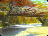 Autumn Tints at Takao, Kyoto